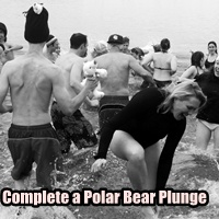 complete a polar bear plunge